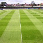 bognor pitch